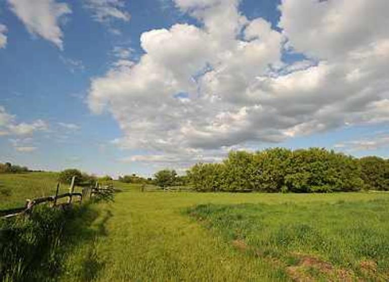 Caledon Horse Farm
