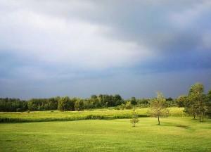 Amaranth, 10 Acres, Pond, Storm