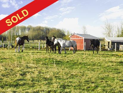 3+1 Bedroom Horse/Hobby Farm on 22 Acres