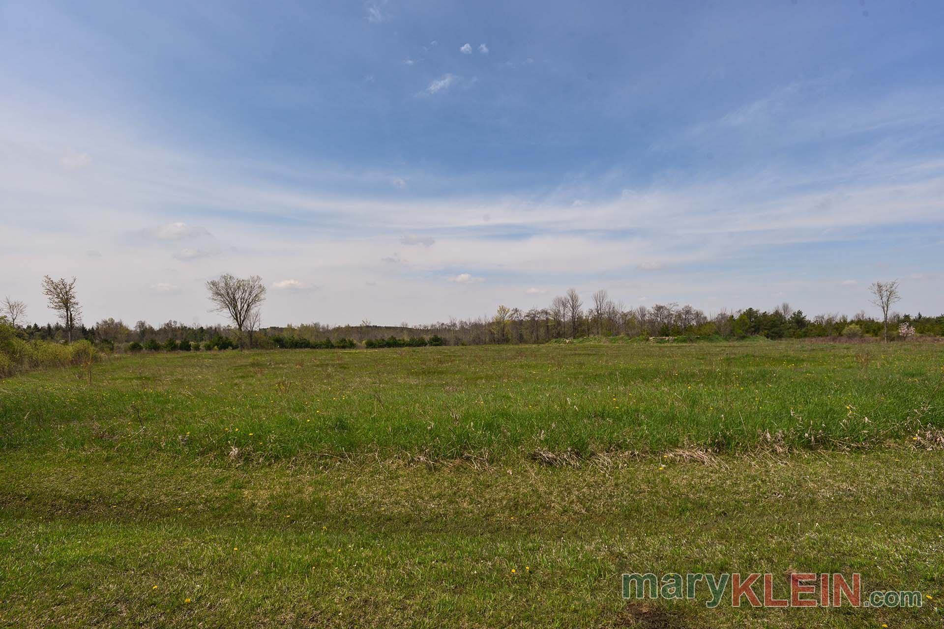 Acreage, For Sale, Caledon, Kennedy Road