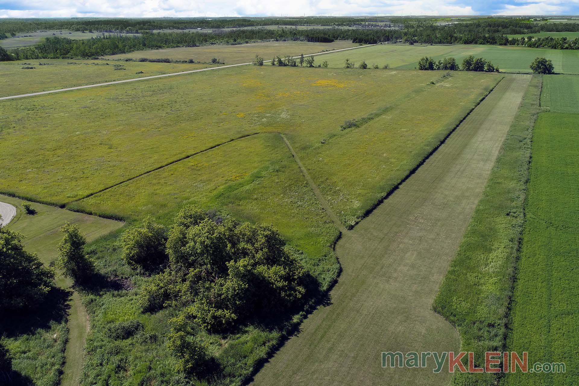 Airstrip, For Sale, North of Brampton