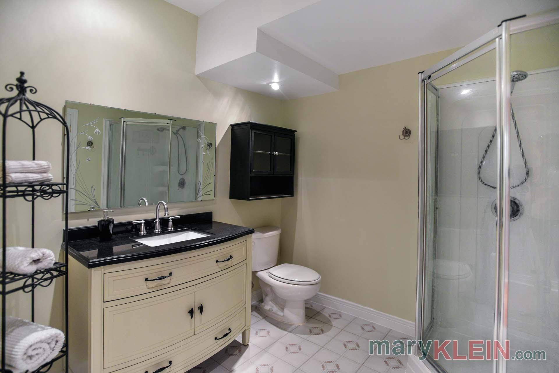 Finished Basement bathroom