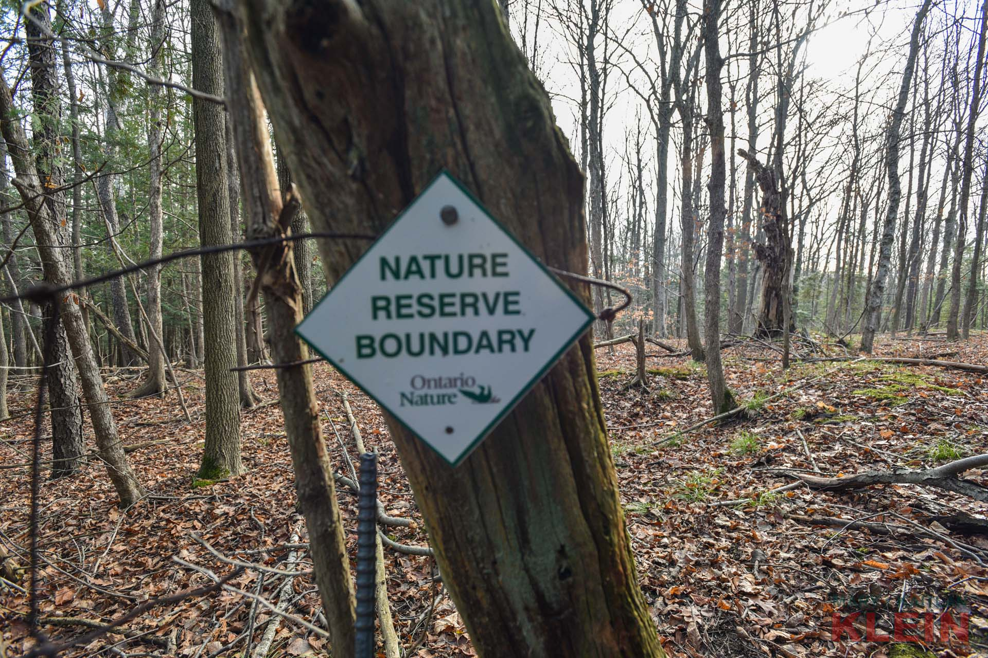 Ontario Nature Reserve Boundary