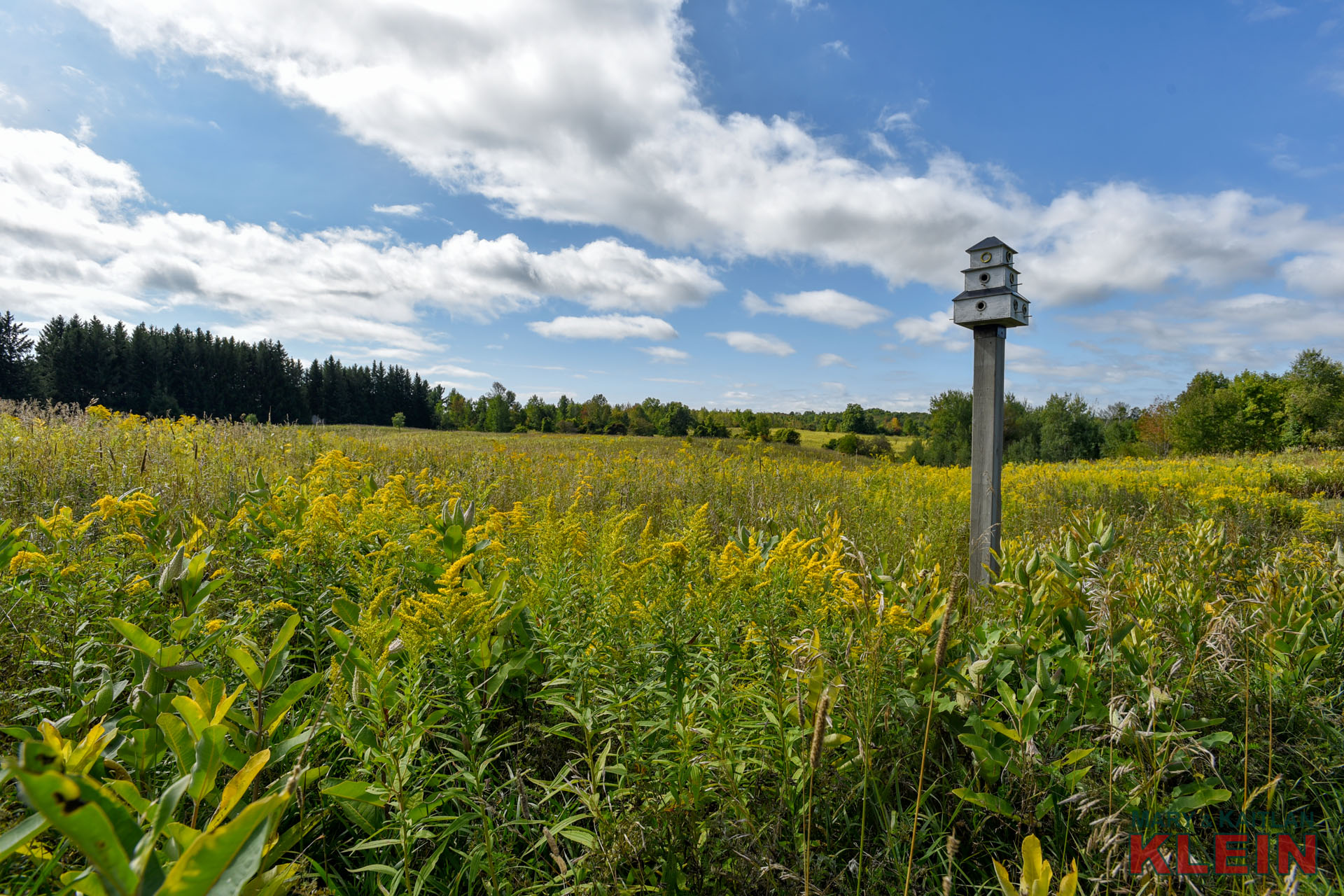 30 Acres in Caledon, Country Property For Sale, Klein