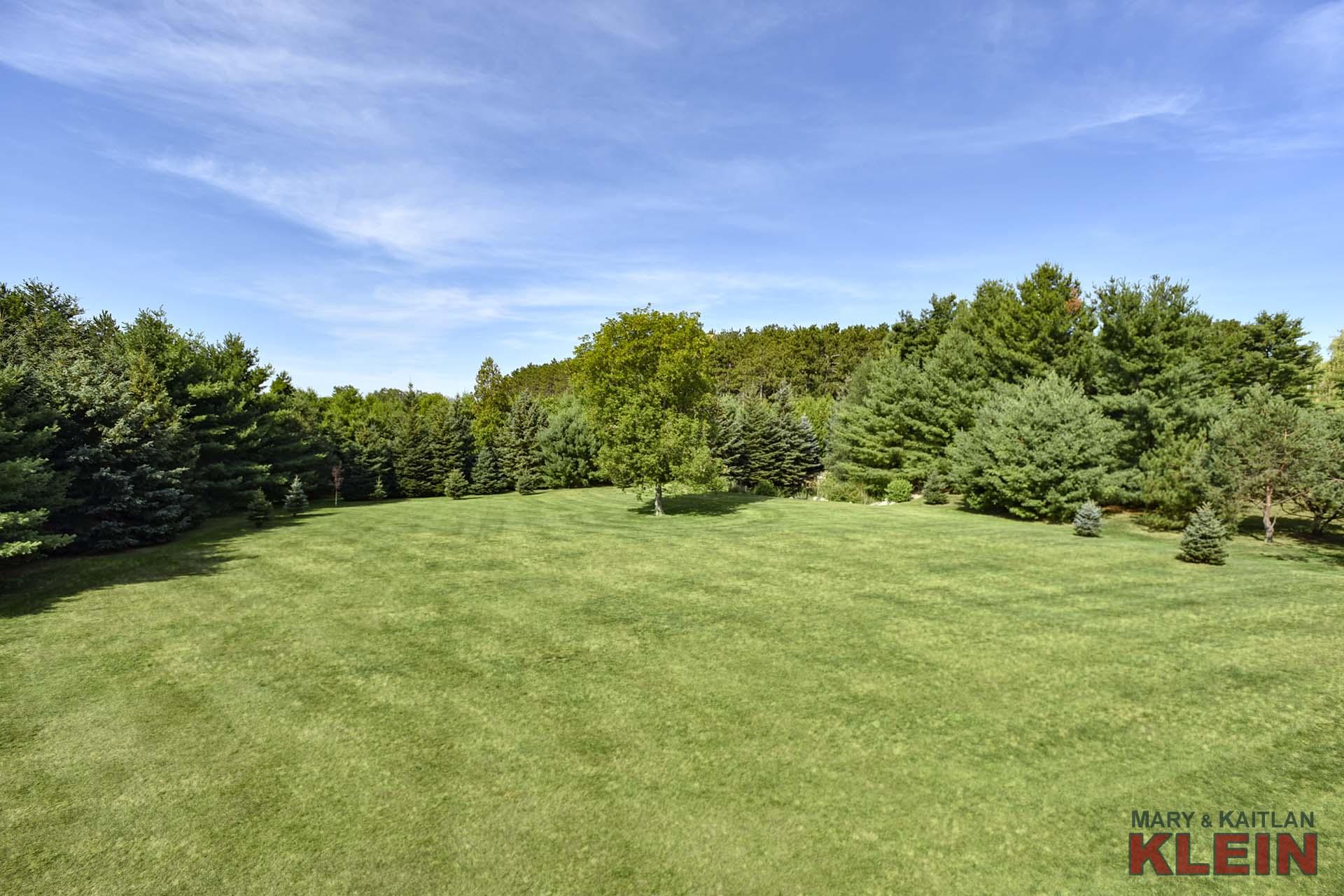 West-Facing Backyard