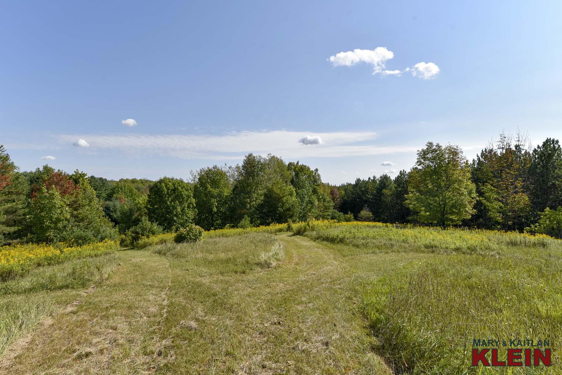 Trails, open area