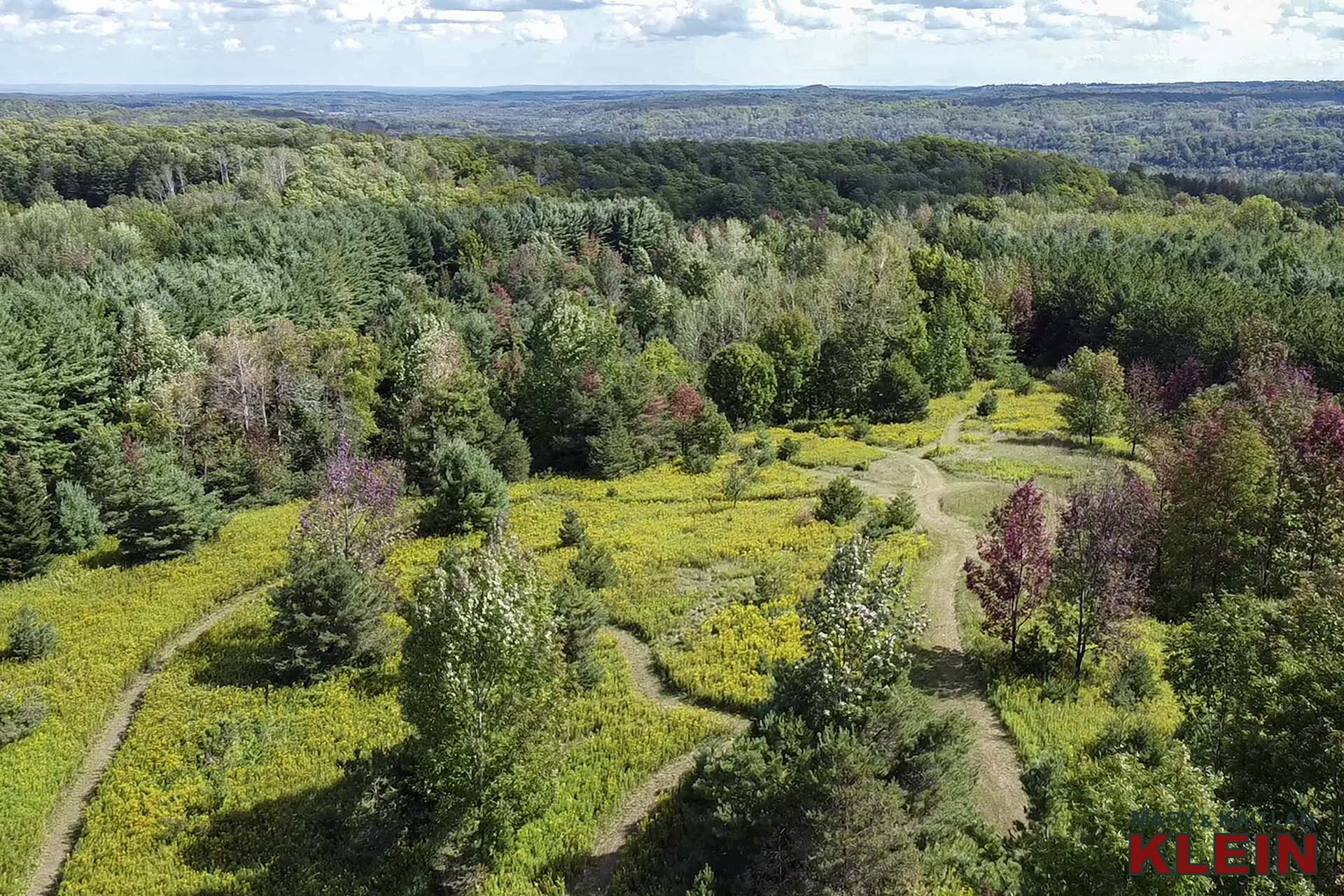 centre, trail system, mulmur, for sale, klein, 637519 Prince of Wales Rd, Aerial
