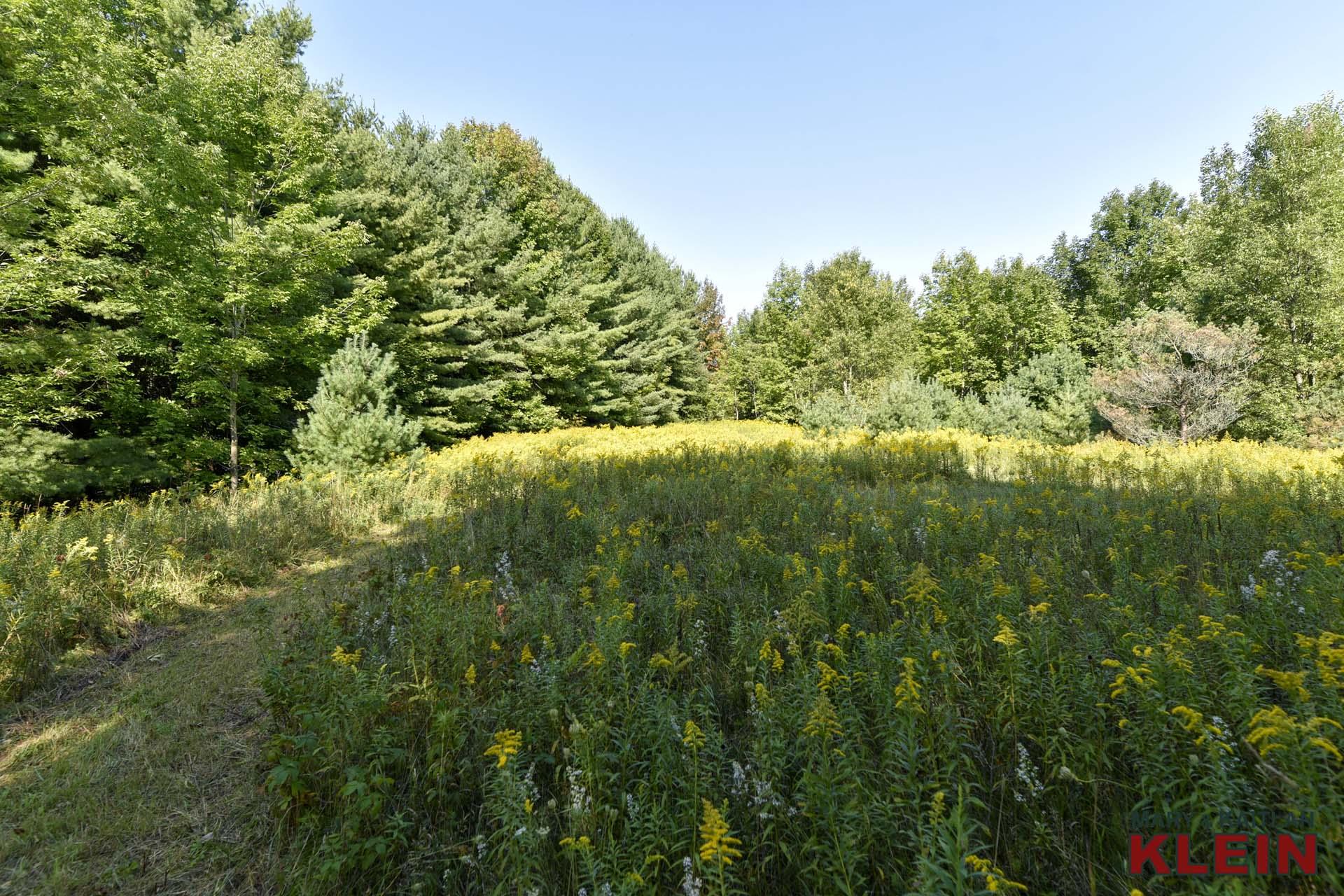 Mulmur, Ontario, vacant land for sale, 33 acres, klein