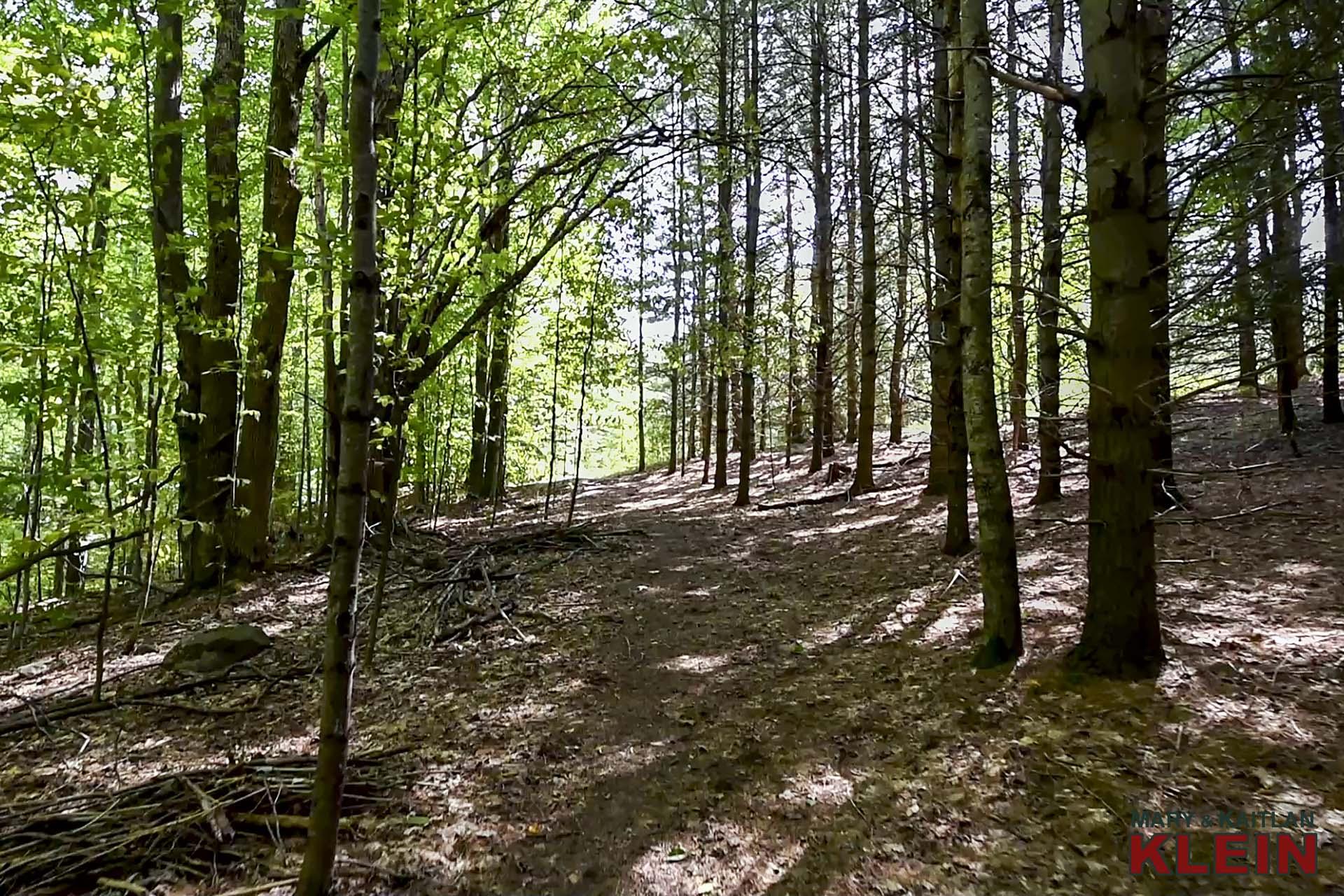 Pathways, groomed trails, mulmur on, land for sale