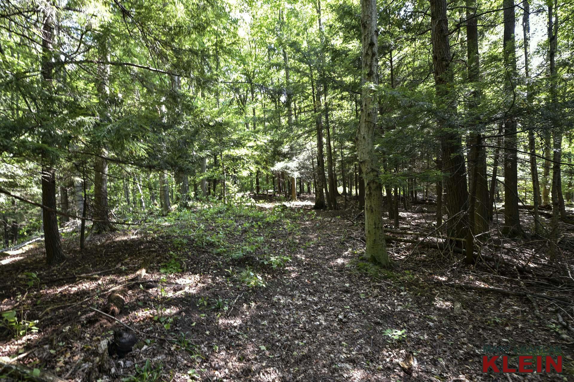 hiking trails, mulmur