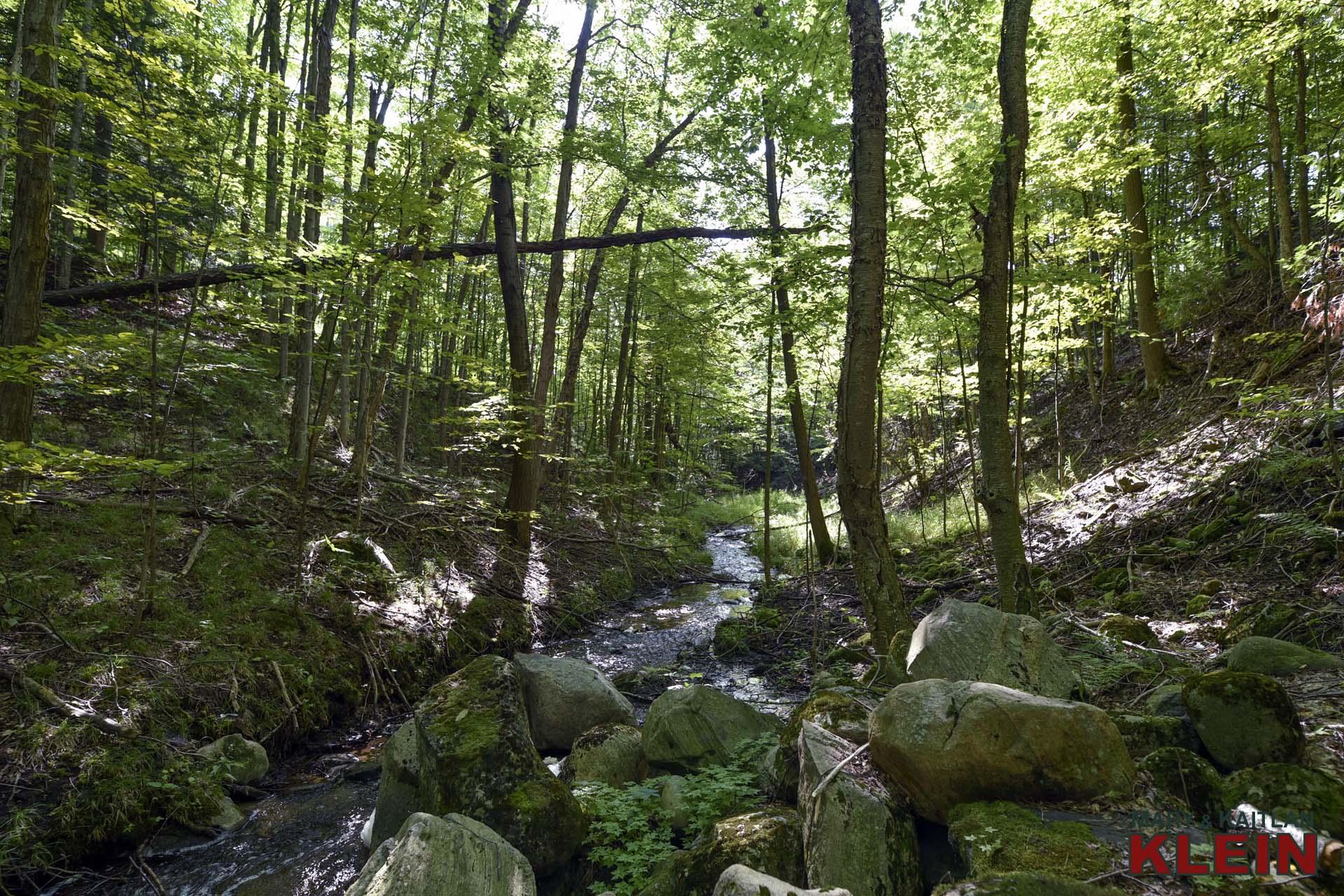 Nature, Mulmur, Stream, Land for sale, Klein