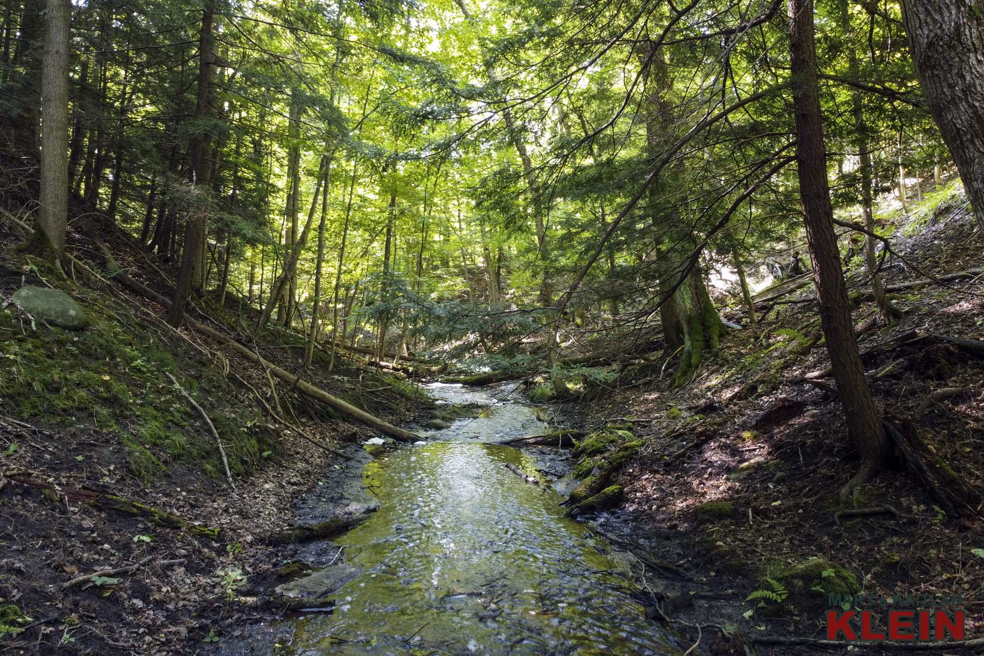 tributary to pine river, mulmur ontario, mary klein, kait klein, land for sale