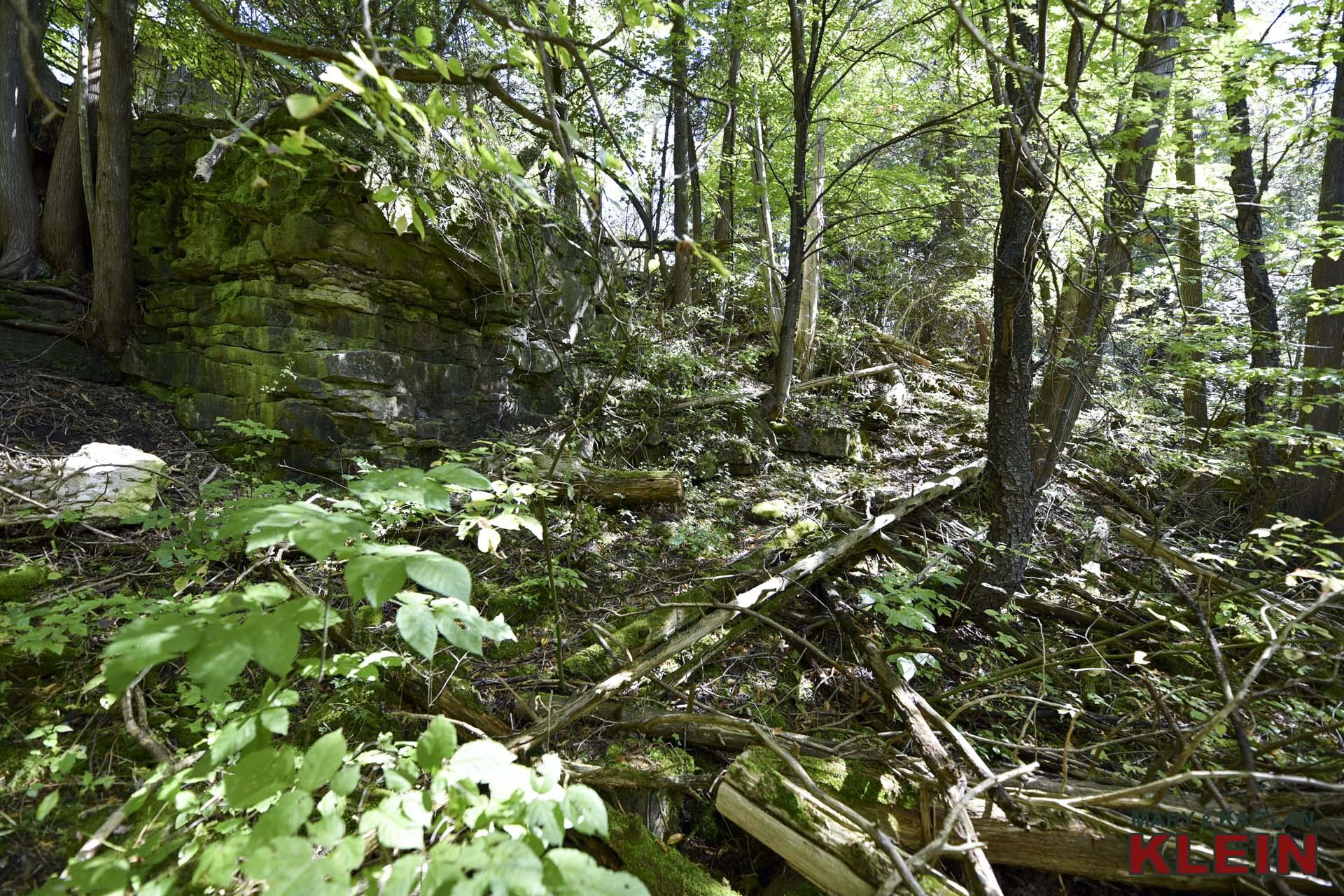 small outcropping of the Niagara Escarpment (dolomite) along its western edge